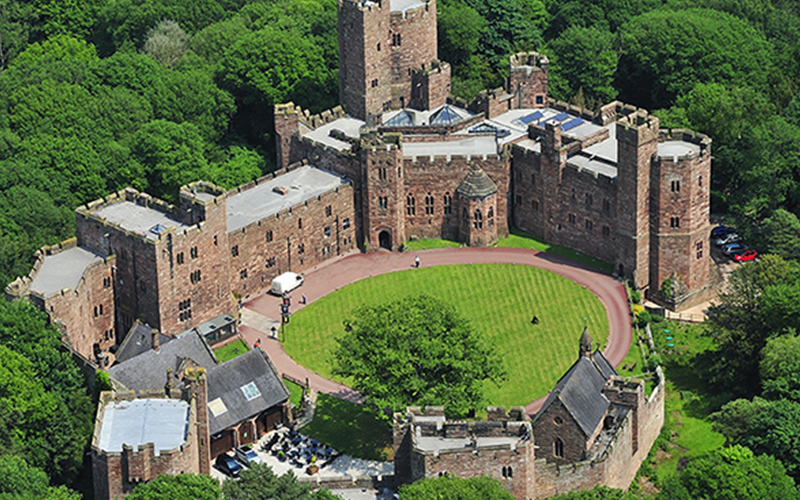 Peckforton castle ball in aid of amaventure