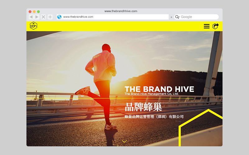 Thebrandhive-home-page new