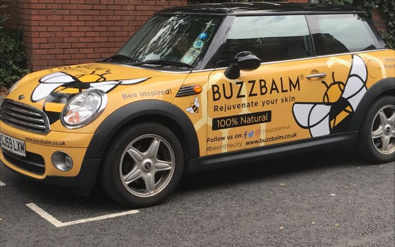BuzzBalm-Mini-Bee-in-the-City