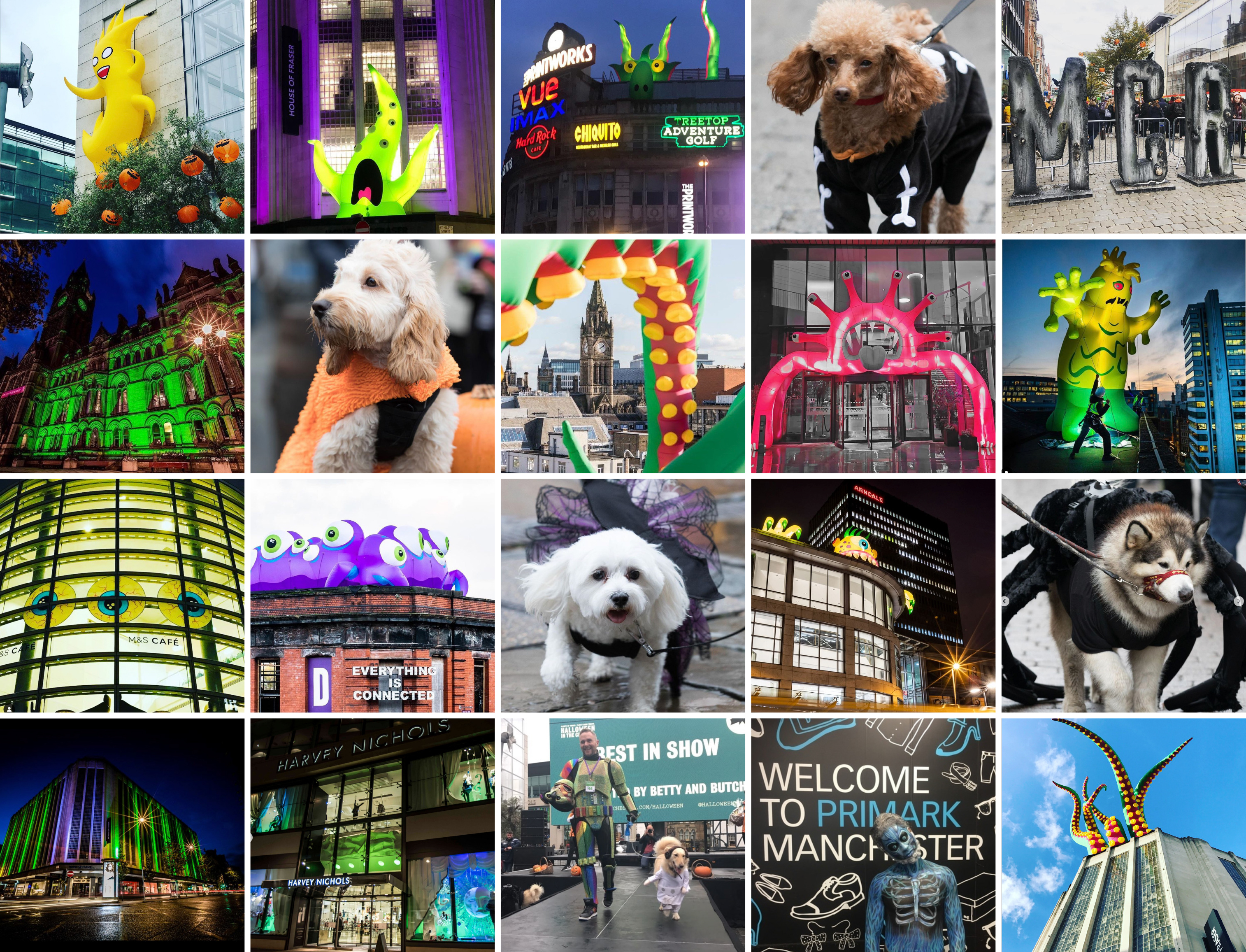 montage of photography halloween 2019 Manchester city centre